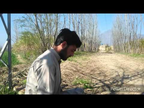 Pashto Funny Vine by (zalmi Vines) Team l Darogh jn malang l 2016