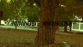 Mwandete the artist