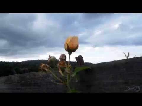 All the Hemispheres, An Audio-Visual Poetry