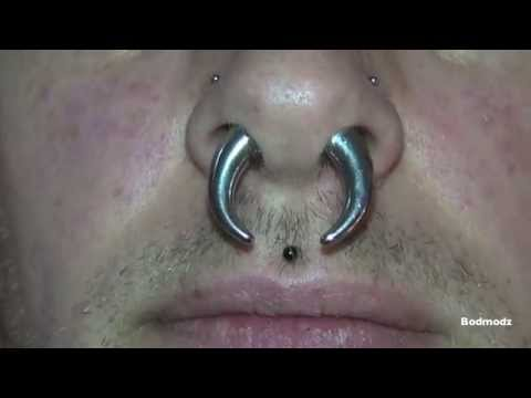 Xxx Mp4 Huge Septum Stretching 4 To 7mm 6 To 1 Gauge 3gp Sex