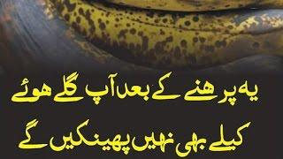 Yeah Faida Dekh Kar Ap Kabhi Bhi Gale Howe Kaile (Banana) Bhi Nahin Phainkain Gy