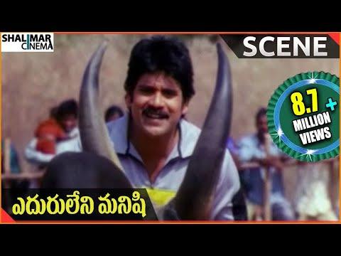 Xxx Mp4 Eduruleni Manishi Movie Nagarjuna Fight With Bull Nagarjuna Soundarya Shenaz 3gp Sex