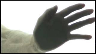 exiff/Borderline Biennale advert 2 + CC subtitles