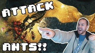 Empires of the Undergrowth - RED ANTS ATTACK! - Empires of the Undergrowth Gameplay