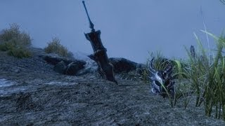Skyrim: The Great Invasion of Skyrim