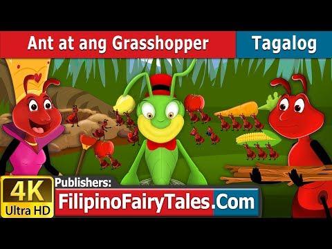 Xxx Mp4 Ant At Ang Grasshopper Kwentong Pambata Mga Kwentong Pambata Filipino Fairy Tales 3gp Sex