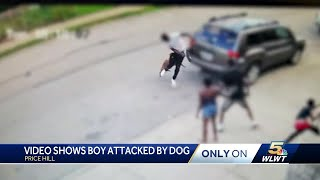 Dog attacks child, man who intervened in Price Hill