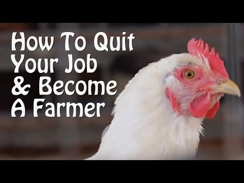 Quit Your Job and Farm PART 1 10 Small Farm Ideas from Organic Farming to Chickens & Goats.