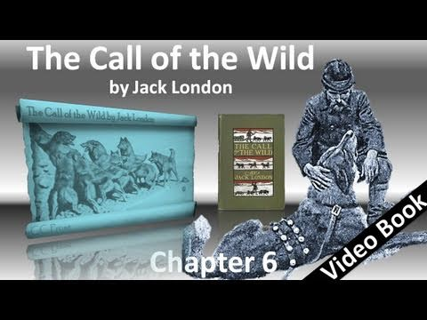 Chapter 06 - The Call of the Wild by Jack London - For the Love of a Man