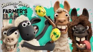 Memenuhi llamas - Farmers Llamas - Shaun the Sheep