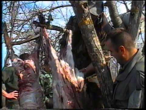 Lov na divlje svinje Matarova Kuršumlija 1