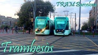 TRAM Barcelona : Trambesòs T4 - T5 - T6 ( Alstom Citadis 302 )