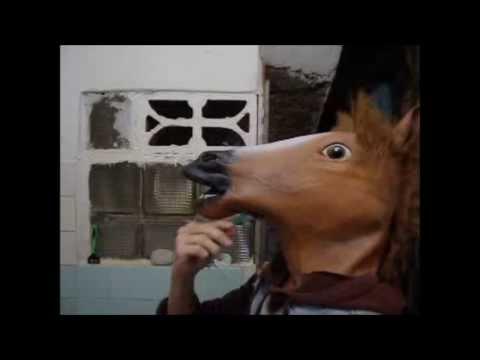 Xxx Mp4 Horse S Fucking Day 3gp Sex