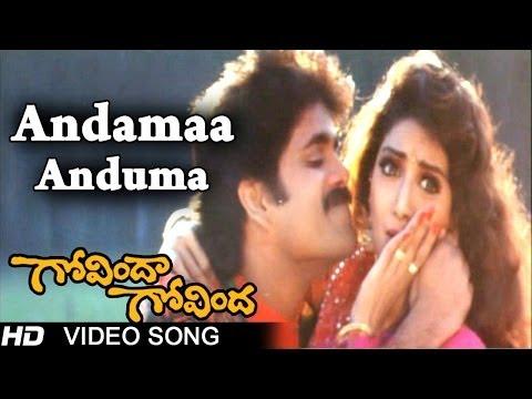 Govinda Govinda Movie | Andamaa Anduma Video Song | Nagarjuna, Sridevi