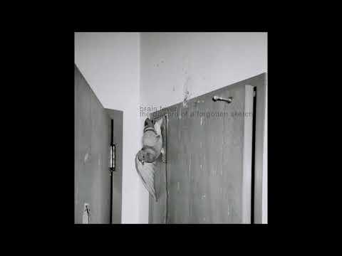 BRAIN FEVER - Falling Apartments (aka La Luna)