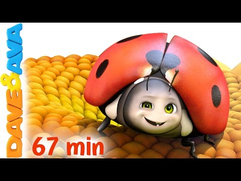 Xxx Mp4 🐞 Five Little Ladybugs Nursery Rhymes Collection And Kids Songs From Dave And Ava 🐞 3gp Sex