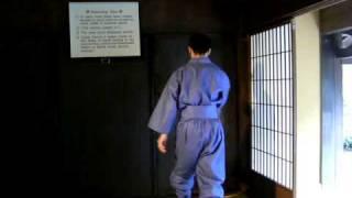 Iga Ninja - hidden door trick