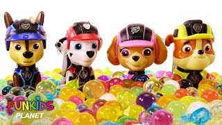 Paw Patrol Chase, Skye and Pup Surprise Orbeez Bath - Learning Colors Videos for Kids