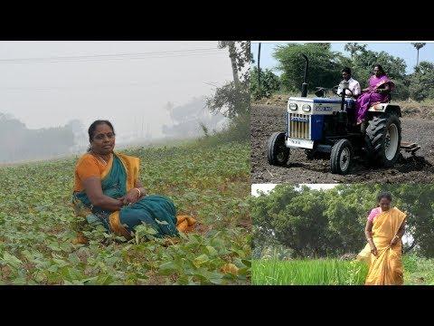Xxx Mp4 என் கிராமத்து வாழ்க்கை Village Life Vlog Pongal Celebration Amma Samayal Special Moments 3gp Sex