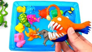 Learn Zoo Animal Names Educational Toys Video For Children