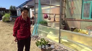 【原创】80岁老太太的可爱日常 为啥整天趴窗户盯着菜园里的两棵大萝卜?  农村牛二条 授权