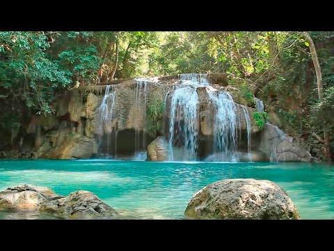Calming Music Nature Sounds Zen Music