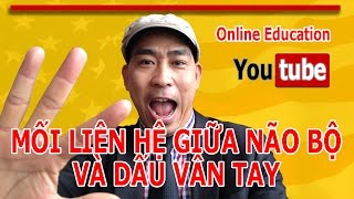 Online Education: Mối liên hệ giữa Sinh Trắc Học Dấu Vân Tay với Não Bộ Vlog 6_Youtube