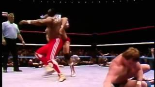WWE Wrestlemania 1: Hulk Hogan/Mr. T vs.