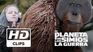 EL PLANETA DE LOS SIMIOS : LA GUERRA | CLIP LEGADO | PRÓXIMAMENTE - SOLO EN CINES