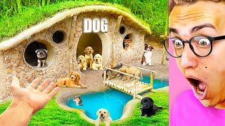 Building An INSANE PRIMITIVE PET MANSION for Puppies!