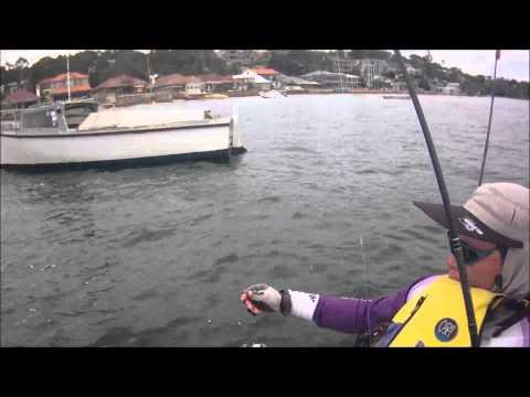 Darwin's Fishing Diary - Gunamatta 26-01-2013
