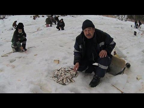 рыбалка в усть илимске 2017