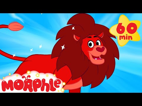 My Pet Lion 1 hour Morphle kids videos compilation with animals