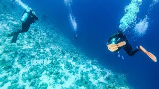 Deep Dive, Descent to Coral Reef Bottom. Scuba Diving in The  Red Sea, Sharm el Sheikh, Egypt