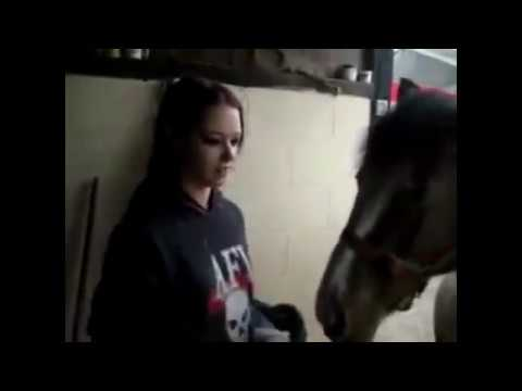 Pretty Women & Modern Farming Horse Mating Breeding Pairing Training Racing Bathing Insemination