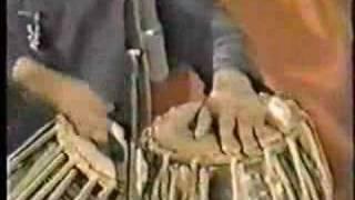 Ustad Tari Khan - Roopak Solo (Gats, Chakradar, and Rela)