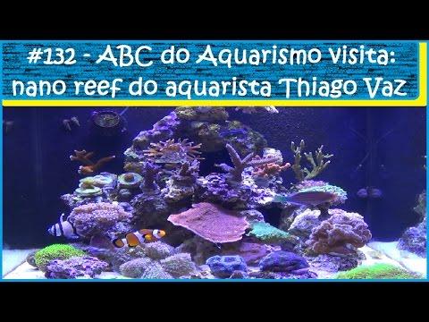 Xxx Mp4 ABC Do Aquarismo Visita A Casa Do Aquarista Thiago Vaz EP132 3gp Sex