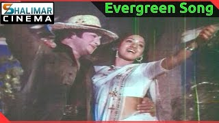 Evergreen Hit Song of the day || Aku Chaatu Pinda Thadise Video Song || shalimarcinema