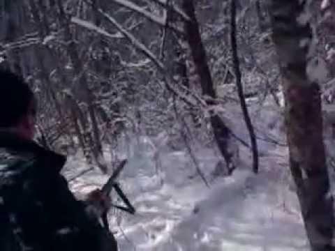 Lov na vepra Uzivo Bugojno 27.01.2013 Hunting