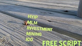 Free Hyip, investment,mining,mlm php script