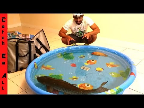KEEPING MEGA FISH INDOORS with POOL POND!