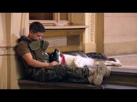 Pojawił się na castingu z wyjątkowymi psami Agnieszka Chylińska była rozczulona Mam Talent