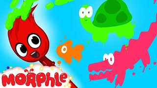 My Magic Colors - Learn Colors With My Magic Pet Morphle Episode #14