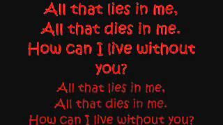 El Nino - How can I live Lyrics on the Screen