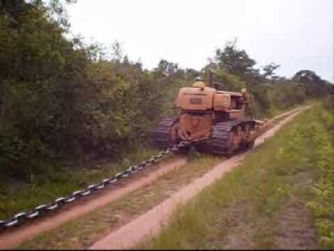 Desmatamento do Cerrado