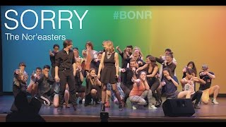 Sorry (opb. Justin Bieber) - The Nor'easters