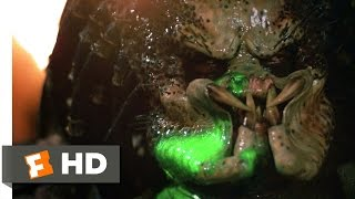 Predator (5/5) Movie CLIP - What the Hell Are You? (1987) HD