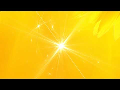 HD YELLOW WEDDING VIDEO BACKGROUND 1080p FREE DOWNLOAD | DMX HD BG 385