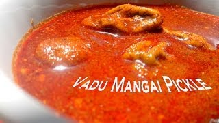 vadu maanga / tender small raw mangoes Pickle