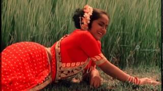Paayum Pulli - Aappa Kada Song